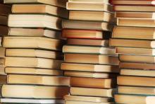 Beletrie ze skladu vyřazených knih v Jenči